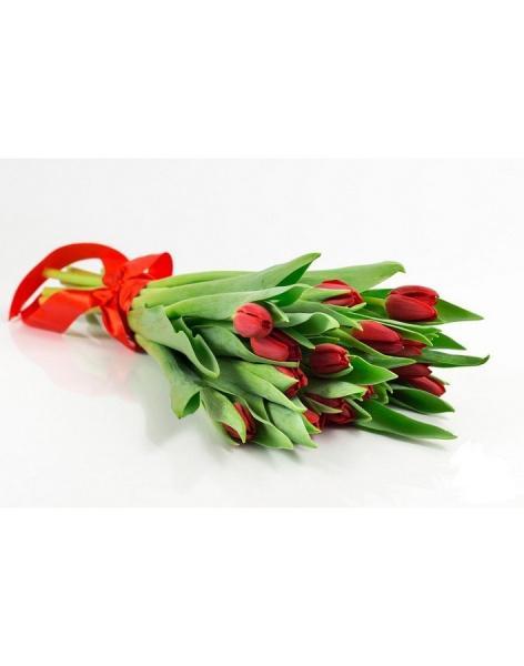Заказать цветы тюльпаны с доставка алматы рубцов букет