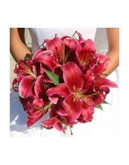 Bouquet of 25 red lilies | Red flowers to mother