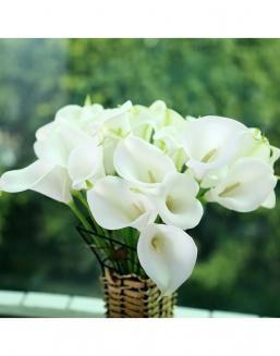 Bouquet of 51 white callas | Delivery and order flowers in Almaty