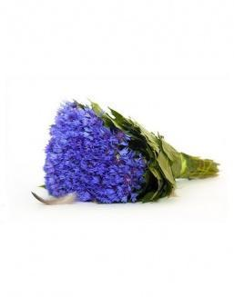 Bouquet of 51 cornflowers | Cornflowers