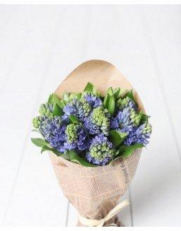 Bouquet of 25 hyacinths | Delivery and order flowers in Almaty