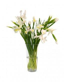 Bouquet of 15 white irises | Delivery and order flowers in Almaty