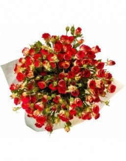 Bouquet of 101 red rose bushes | 101 roses expensive flowers