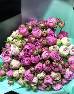 Bouquet of 15 pink spray roses