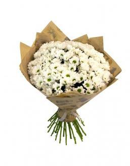 Bouquet of 25 chrysanthemums | Delivery and order flowers in Almaty