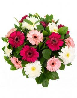 Bouquet of 25 white-pink gerberas | 25 gerbera,carnations flowers