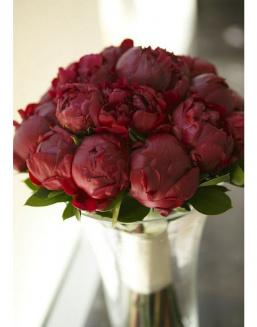 Bouquet of 15 claret peonies | Flowers for Birthday flowers