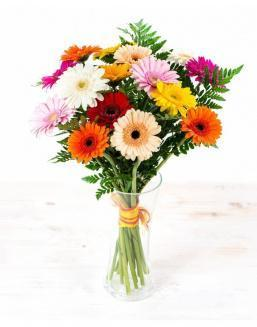 Bouquet of 25 bright gerberas | 25 gerbera,carnations flowers