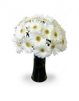 Bouquet of 25 white gerberas | Gerbera,carnations,lilies to colleague flowers