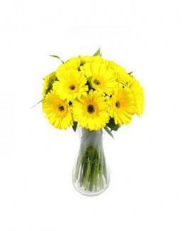 Bouquet of 25 yellow gerberas | 25 gerbera,carnations flowers