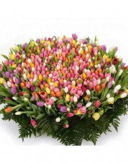 Mix bouquet 501 tulips | Red flowers to mother