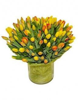 Bouquet 501 yellow tulips | Delivery and order flowers in Almaty