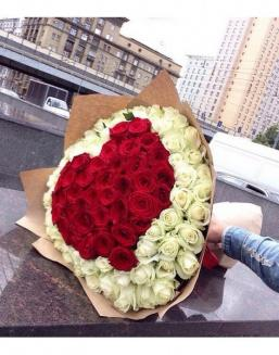 Amur | White roses flowers