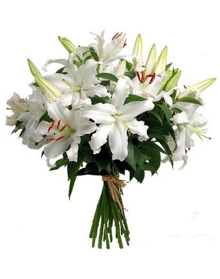 Bouquet of 15 lilies